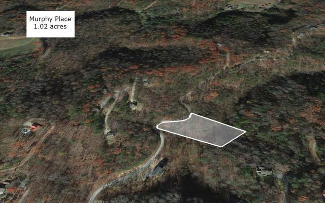 3622 Ivy Way, Sevierville, TN 37876 (#243379) :: Colonial Real Estate