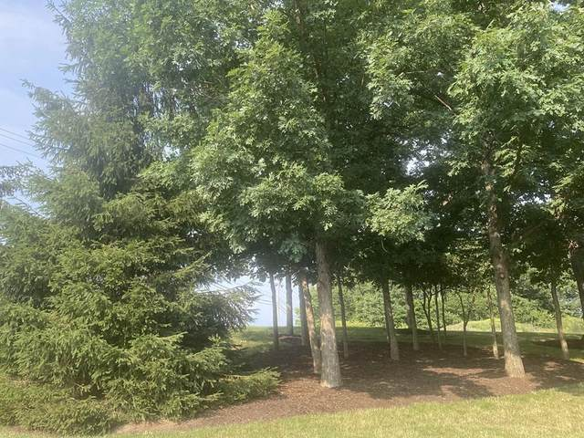 1735 Cherry View Ln, Pigeon Forge, TN 37876 (#243977) :: Suzanne Walls with eXp Realty