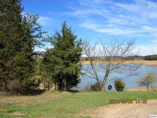Moonside Ln Douglas Lake Lo, Sevierville, TN 37876 (#201925) :: Billy Houston Group
