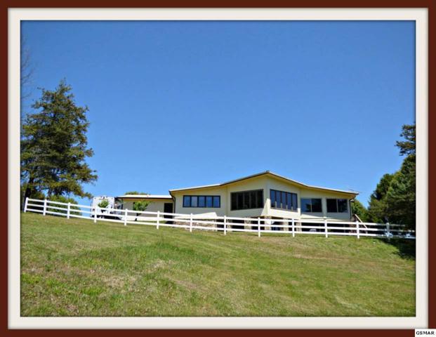 1239 Treadway Dr., Dandridge, TN 37725 (#209013) :: Colonial Real Estate