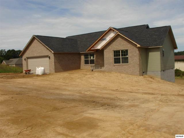 625 Bryce View, Sevierville, TN 37876 (#216106) :: Billy Houston Group