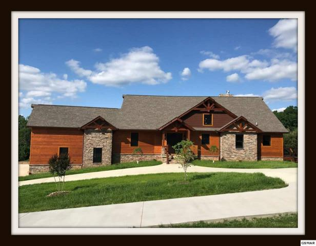 3432 Cove Meadows Dr Lodge Style in , Sevierville, TN 37862 (#218419) :: The Terrell Team