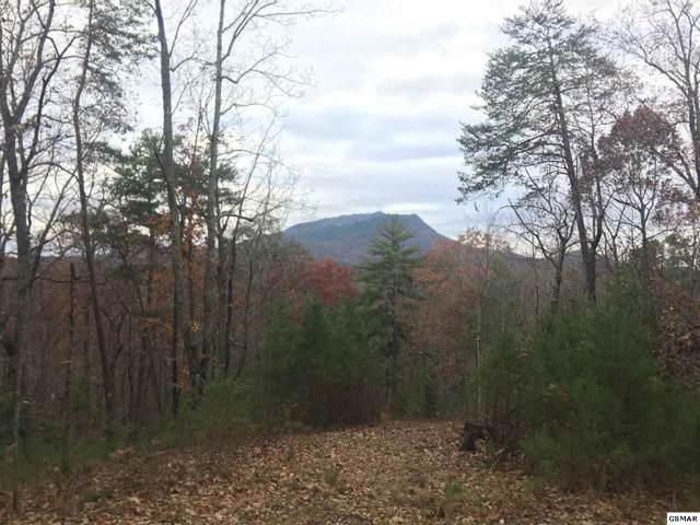 S New Era Lot 10, Sevierville, TN 37862 (#224742) :: Suzanne Walls with eXp Realty