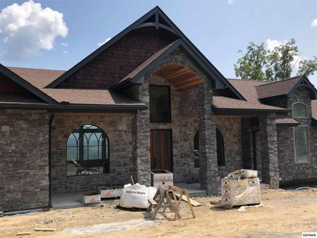 2933 Smoky Bluff Trail, Sevierville, TN 37862 (#214864) :: Colonial Real Estate