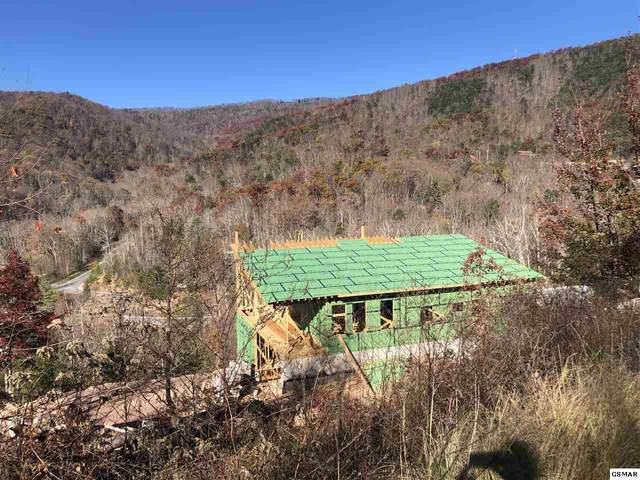 3343 Summit Trails Dr., Sevierville, TN 37862 (#230523) :: Colonial Real Estate