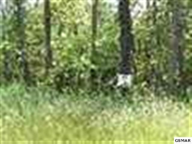 Lot 12 Walk In The Tree, New Market, TN 37820 (#149771) :: Billy Houston Group