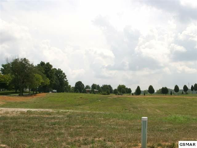 9320 Gabrielle Road, Strawberry Plains, TN 37871 (#166832) :: Billy Houston Group