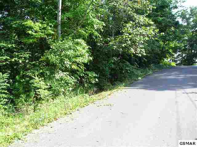 parcel 5.00 Sunset Circle, Newport, TN 37821 (#172331) :: Colonial Real Estate