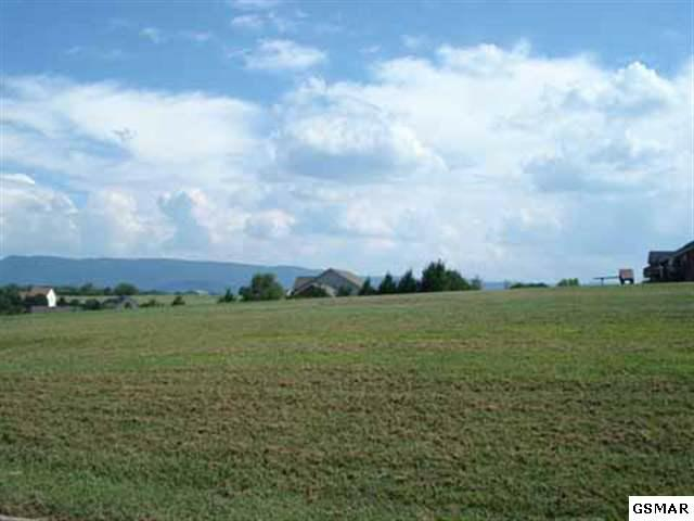 Lot 15 Front Runner Lane, Seymour, TN 37865 (#176674) :: Billy Houston Group