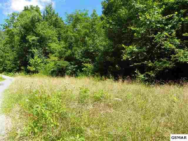 Lot 22 Windswept View Way, Sevierville, TN 37862 (#183178) :: Billy Houston Group