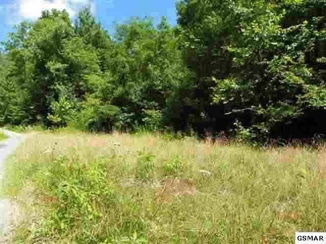 Lot 24 Windswept View Way, Sevierville, TN 37862 (#183181) :: Billy Houston Group