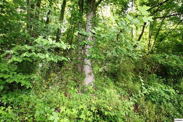 Lot 26 Mccarter Rd, Gatlinburg, TN 37738 (#189958) :: The Terrell Team