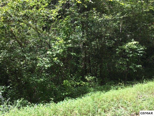 Lot 48 Silverbell Drive, Sevierville, TN 37876 (#196701) :: Billy Houston Group