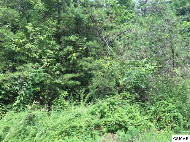 Lot 46 Silverbell Drive, Sevierville, TN 37876 (#196702) :: Billy Houston Group