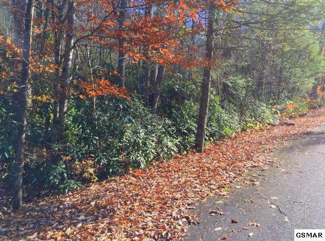 Lot 23 Scottish Highland Way, Sevierville, TN 37862 (#200032) :: Colonial Real Estate