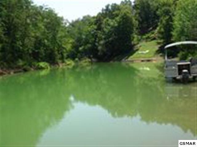 Lot 13R1 Pleasure Rd, Sevierville, TN 37876 (#203347) :: Four Seasons Realty, Inc