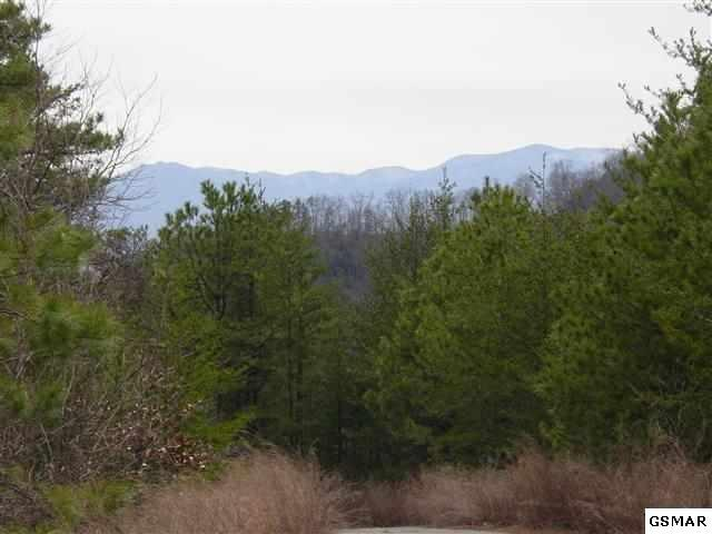 LOT 6 Happy Hollow Rd High Pointe, Sevierville, TN 37862 (#206645) :: Billy Houston Group