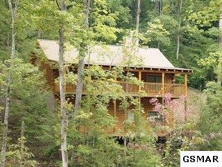 607 Eagles Boulevard Way Cabin 261, Pigeon Forge, TN 37863 (#206720) :: Colonial Real Estate