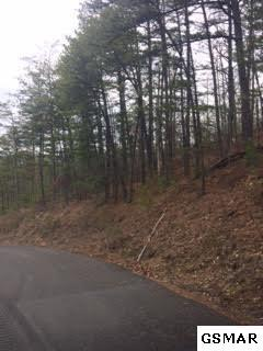 Lot# 2, 10 & 11 Of Emerald Springs Loop, Sevierville, TN 37862 (#207114) :: Colonial Real Estate