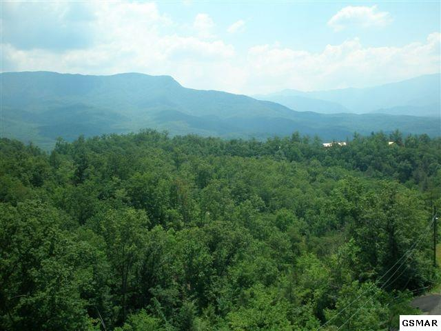Lot 70 Big Bear Ridge Road, Gatlinburg, TN 37738 (#207383) :: The Terrell Team