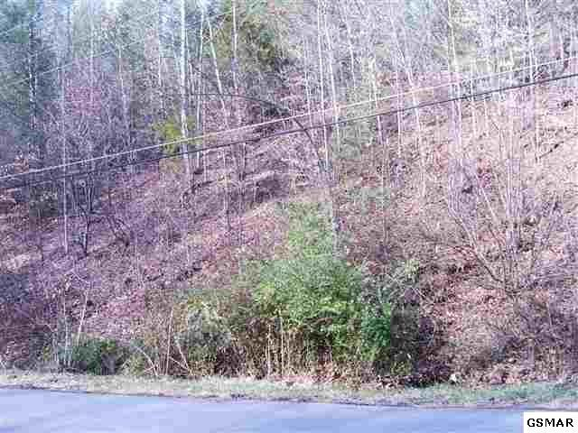 lot 9 Rule Way Tract 9, Sevierville, TN 37876 (#207676) :: Billy Houston Group