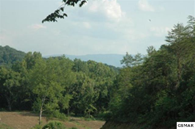 lot 10 Rule Way Tract 10, Sevierville, TN 37876 (#207677) :: Billy Houston Group