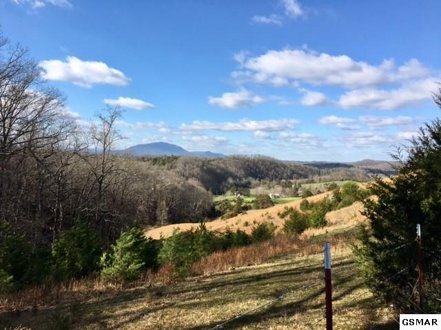 Lot 9 Crystal View, Sevierville, TN 37876 (#208204) :: Billy Houston Group