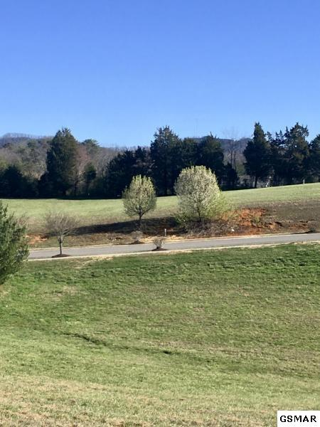 Lot 25 Park Place Ave, Sevierville, TN 37862 (#208375) :: The Terrell Team