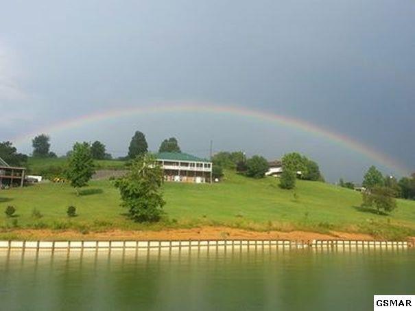 1401 Lake Front Drive, Dandridge, TN 37725 (#208497) :: Colonial Real Estate