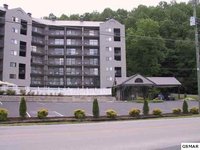 306 Baskins Creek Rd Unit 6A, Gatlinburg, TN 37738 (#208622) :: Colonial Real Estate
