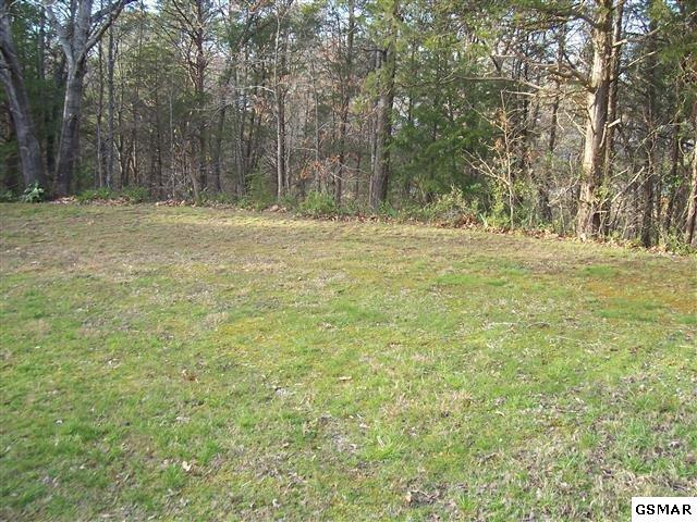 Lot 32 Sharon Dr, Pigeon Forge, TN 37863 (#208671) :: Billy Houston Group