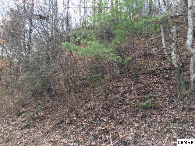 1626 Ridgecrest Dr, Sevierville, TN 37876 (#208718) :: Prime Mountain Properties