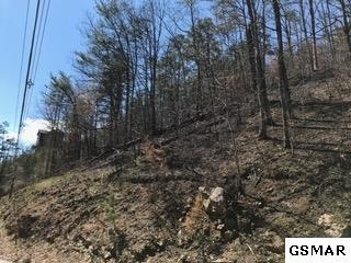 Lot#2BC Walker Trail, Sevierville, TN 37876 (#208831) :: Billy Houston Group
