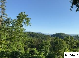Lot 1AC Red Bone Way, Sevierville, TN 37876 (#209884) :: Billy Houston Group