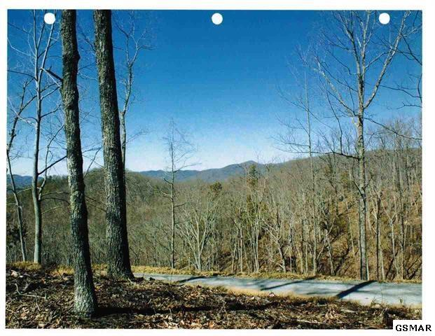 Lot 49W Long Rifle Road, Walland, TN 37886 (#209892) :: Billy Houston Group