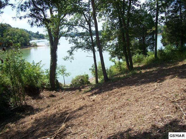 10 Acre Muddy Creek Rd, Dandridge, TN 37725 (#210284) :: Colonial Real Estate