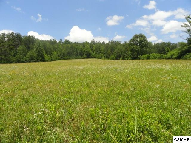 4 Acres Old Wilhite, Sevierville, TN 37876 (#210336) :: Four Seasons Realty, Inc