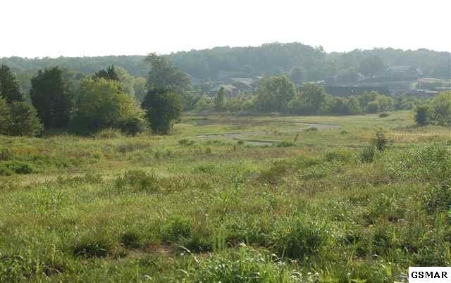 Lot 13 Fox Landing Court, Sevierville, TN 37862 (#210367) :: The Terrell Team