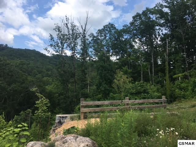 1130 Autumn Path Way Lot 34, Sevierville, TN 37862 (#210837) :: Colonial Real Estate