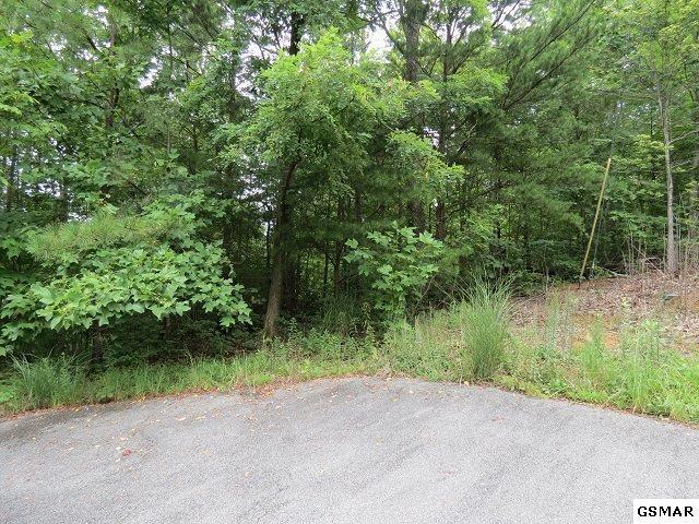 Lot 5 Thissa Way, Gatlinburg, TN 37738 (#211628) :: SMOKY's Real Estate LLC