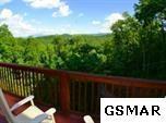 3336 Hidden Hollow Way, Sevierville, TN 37862 (#211673) :: SMOKY's Real Estate LLC