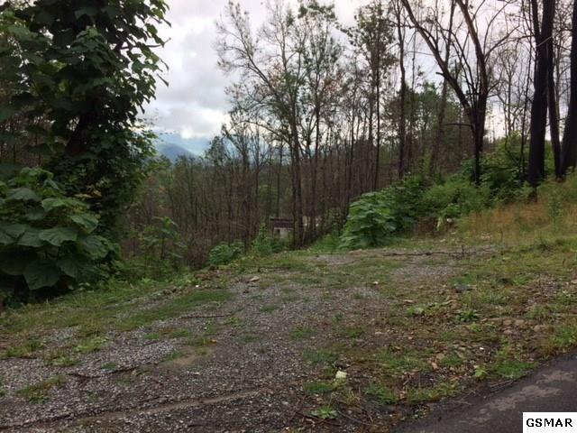 904 Elm Road Lot# 46, Gatlinburg, TN 37738 (#211698) :: The Terrell Team
