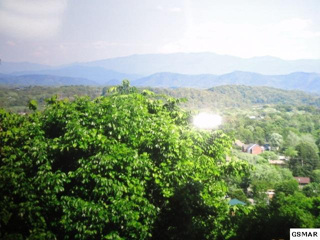 Lot 20 Maggie Mack Ln, Sevierville, TN 37862 (#211736) :: Colonial Real Estate