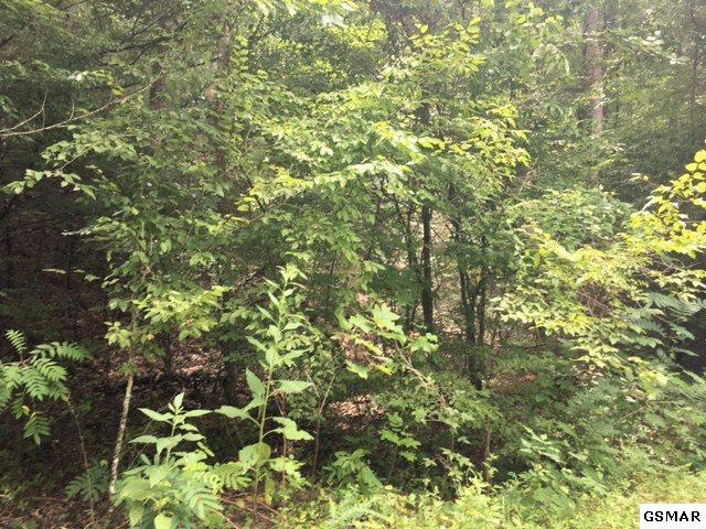 Lot 1459 Beach Front Dr, Sevierville, TN 37876 (#211929) :: Colonial Real Estate