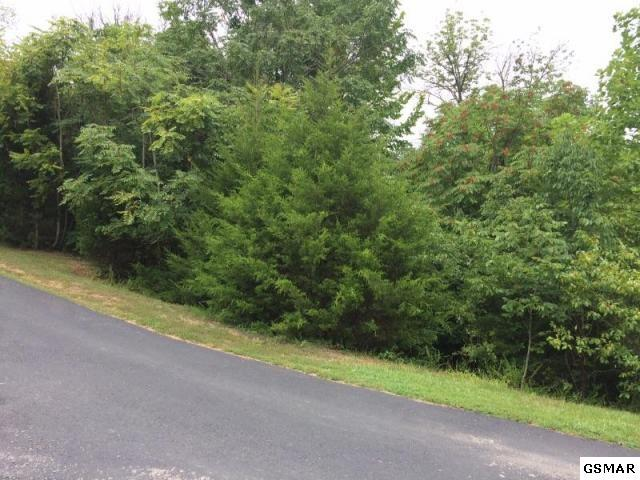 Caywood Rd, Dandridge, TN 37725 (#212053) :: Colonial Real Estate