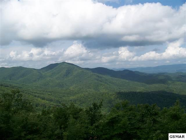 Lot 17 Laurel Top Way Enclave At Cove, Gatlinburg, TN 37738 (#212081) :: Billy Houston Group