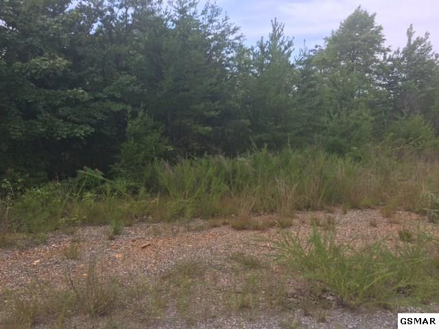 Lot 23 Clear Fork Rd S Off, Sevierville, TN 37876 (#212205) :: Four Seasons Realty, Inc