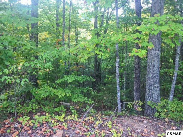 Lot#11 Pinemont Drive, Pigeon Forge, TN 37863 (#212421) :: Four Seasons Realty, Inc