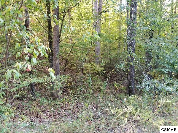 Lot 12 Gregory Way, Sevierville, TN 37876 (#212517) :: Billy Houston Group