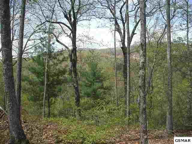 Lot 12 Lexy Lane Foothills Estat, Sevierville, TN 37862 (#212775) :: Colonial Real Estate